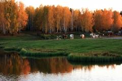 9_derevnya_emorlaevo_2_foto_yu_morgunov