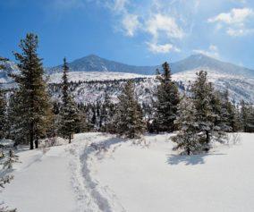Национальный парк Шушенский бор
