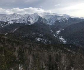 Шушенские каникулы в национальном парке «Шушенский бор»